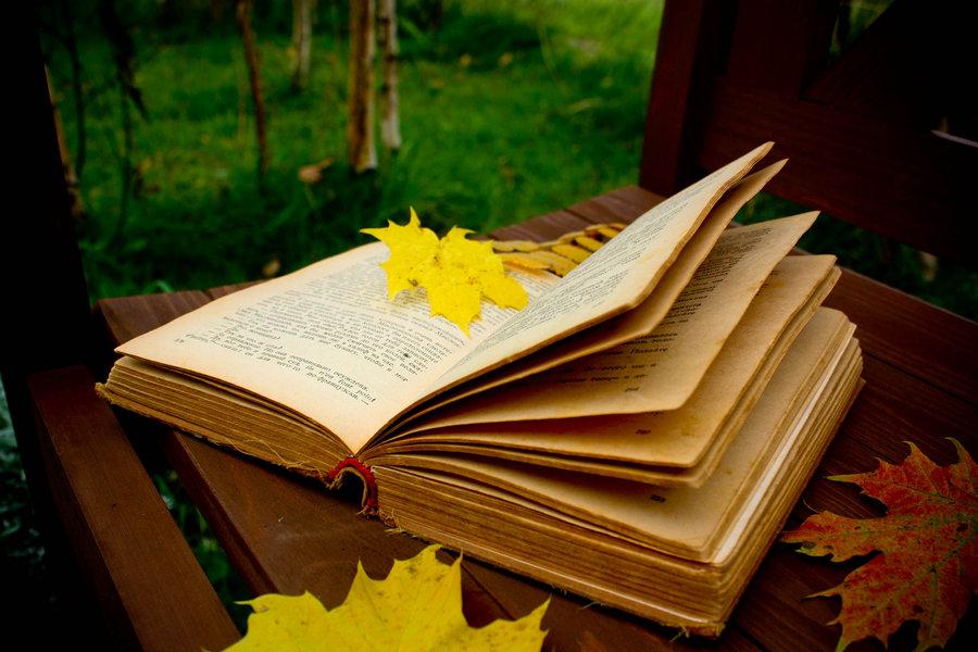 Literární listopad – Brno